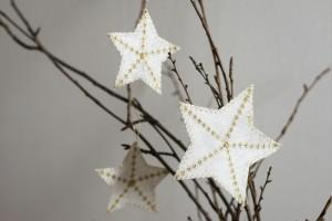 Hvězdičky FOREWEAR pro Pronájem stromků